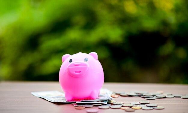 Close-up bilder von geld und schweinen, geld sparen geld sparen das konzept der geld sparen Premium Fotos