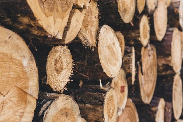 Close-up von einem stapel von brennholz Kostenlose Fotos
