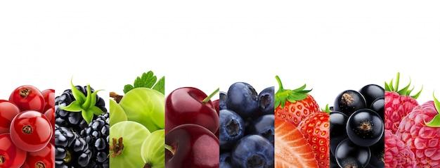 Collage von den früchten lokalisiert auf weißem hintergrund mit kopienraum Premium Fotos