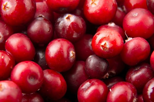 Cranberry von leckeren beeren. Premium Fotos