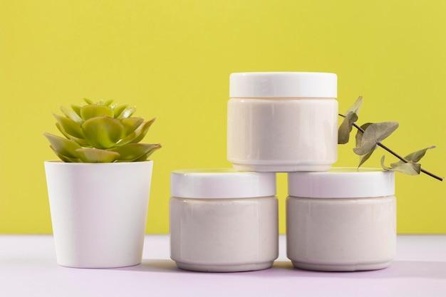 Cremebehälter mit topfpflanze Kostenlose Fotos
