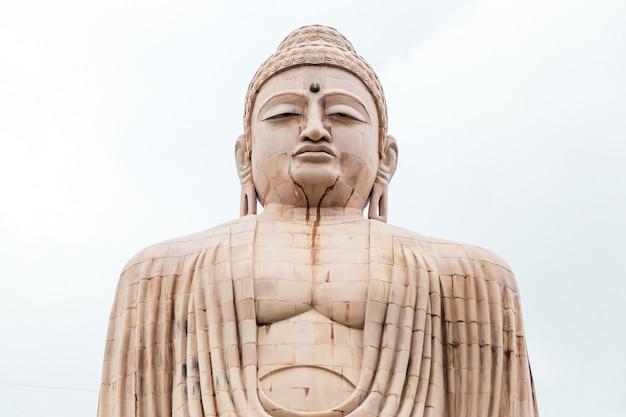Daibutsu, die große buddha-statue in der meditationshaltung Premium Fotos