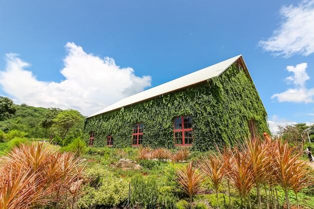 Das große haus, das mit grünpflanze umgeben wurde, nannte birder häuschen, nakhonratchasima, thailand Premium Fotos