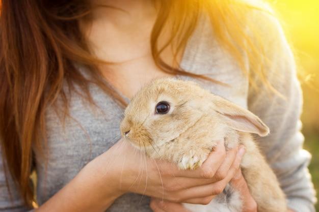 Das mädchen mit dem kaninchen.glückliches kleines mädchen, das niedlichen flaumigen häschen hält. freundschaft mit osterhasen Premium Fotos