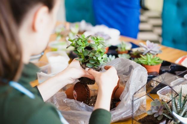 Das mädchen pflanzt eine glasform, pflanzt blumen, glasterarium Premium Fotos