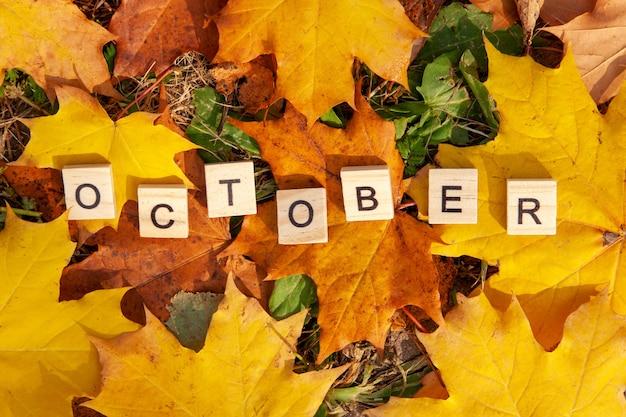 Das wort oktober ist in holzbuchstaben auf einem hintergrund von abgefallenen blättern geschrieben. herbstkonzept und kalenderkonzept. speicherplatz kopieren Premium Fotos