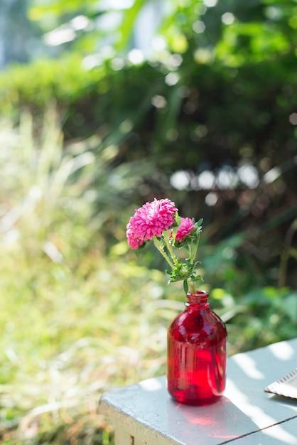 dekorative blume in einem roten flasche download der. Black Bedroom Furniture Sets. Home Design Ideas