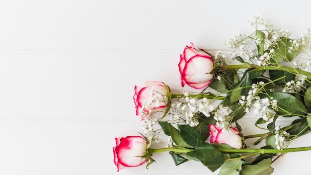 Dekorative bunte rosen auf einem hintergrund Kostenlose Fotos