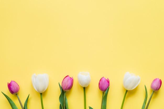 Dekorative bunte tulpenblumen auf einem hintergrund Kostenlose Fotos
