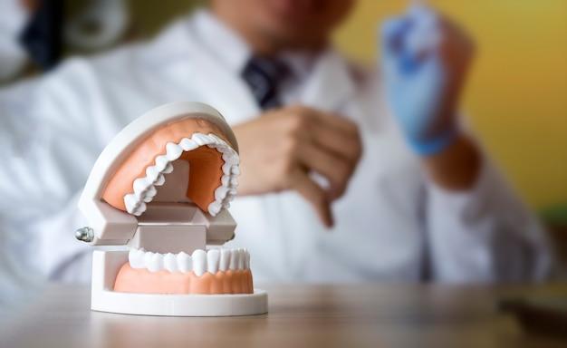 Dental-konzept; zahnmedizinisches menschliches zahnmodell mit unscharfem hintergrund Premium Fotos