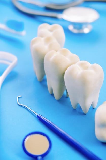 Dentalmodell und zahnärztliche ausrüstung auf blau Premium Fotos