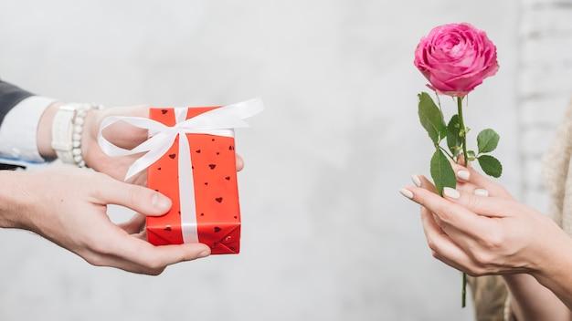 Der erntemann, der der frau geschenk mit gibt, stieg Kostenlose Fotos