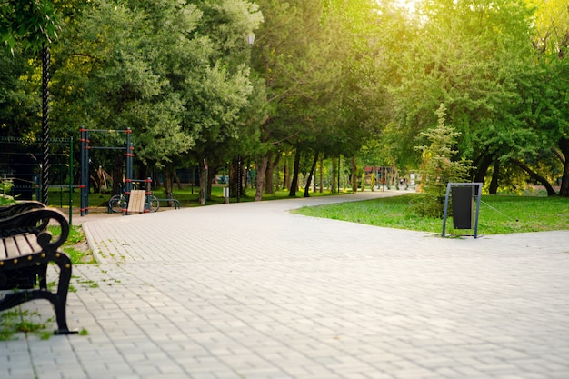 Der fahrweg im stadtpark mit bäumen und gras Premium Fotos