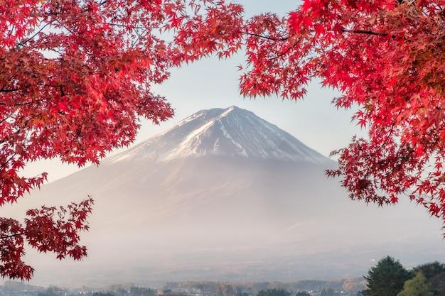 Der fujisan mit roten ahornblättern bedeckt am morgen am kawaguchiko see Premium Fotos