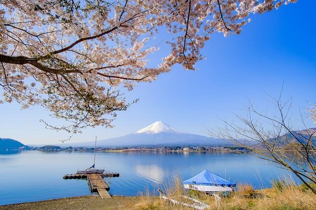 Der fujisan mit schneebedecktem, blauem himmel und schöner kirschblüte Premium Fotos
