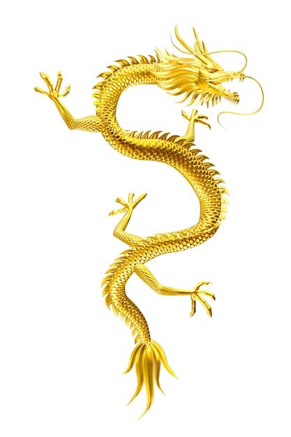 Der glückliche anführer des goldenen drachen kommt mit familie und freunden zu ihnen Premium Fotos