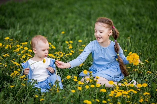 Der kleine kaukasische junge und mädchen, die auf löwenzahn sitzen, blüht wiese Premium Fotos