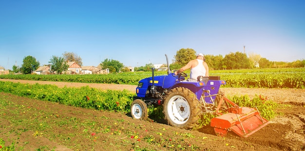 Der traktor bearbeitet den boden nach der ernte. ein bauer pflügt ein feld. pfefferplantagen. Premium Fotos
