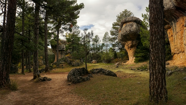 Der verzauberte stadtnaturpark, gruppe schändliche formkalksteinfelsen in cuenca, kastilien-la macha, spanien. Premium Fotos