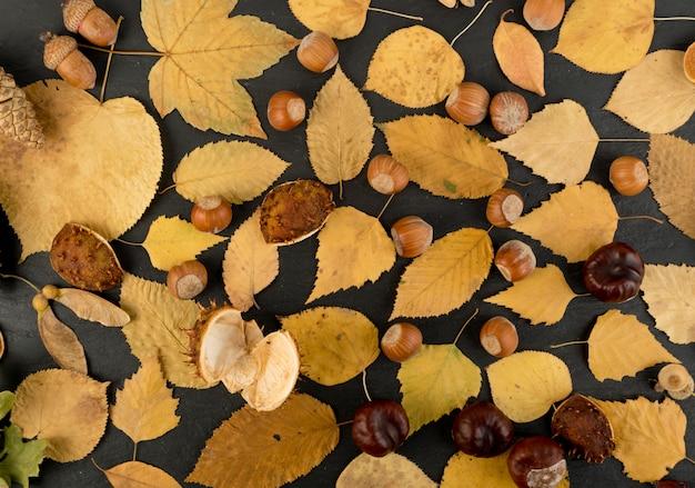 Der waldboden in tarnfarben mit birken-, eichen-, ahorn-, kastanien-, bergahorn-, linden- und anderen blattmischungen. flache getrocknete blätter draufsicht Premium Fotos