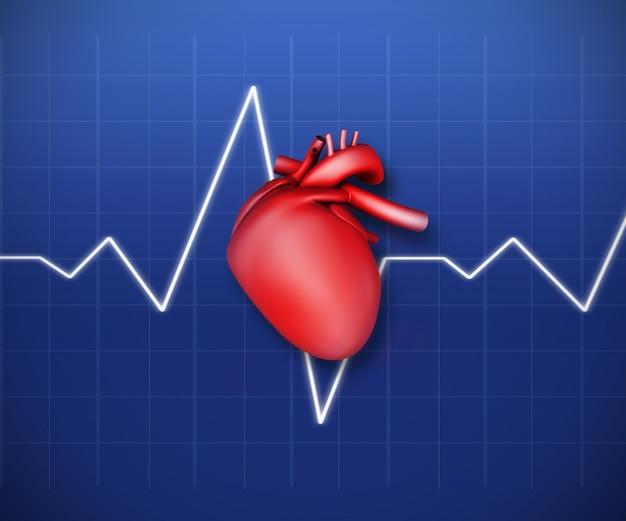 Diagramm eines Herzens mit EKG-Linie | Download der Premium Fotos