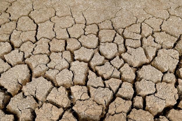 Die braune bodenoberfläche ist rissig. konzept der globalen erwärmung. rissige erdstruktur. Premium Fotos