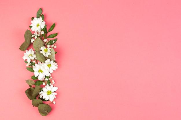 Die dekoration, die mit weißem gänseblümchen gemacht wird, blüht und verlässt über pfirsichhintergrund Kostenlose Fotos