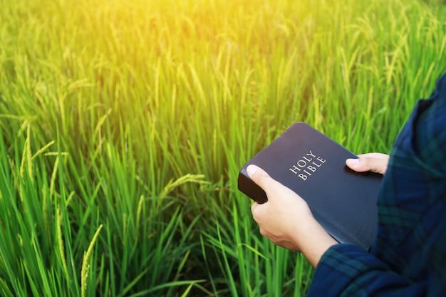 Die frau liest die bibel. Premium Fotos