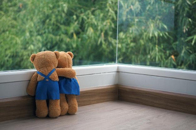 Die freundschaft und die beziehung zweier teddybären umarmen sich und blicken auf den bambus am fenster. Premium Fotos