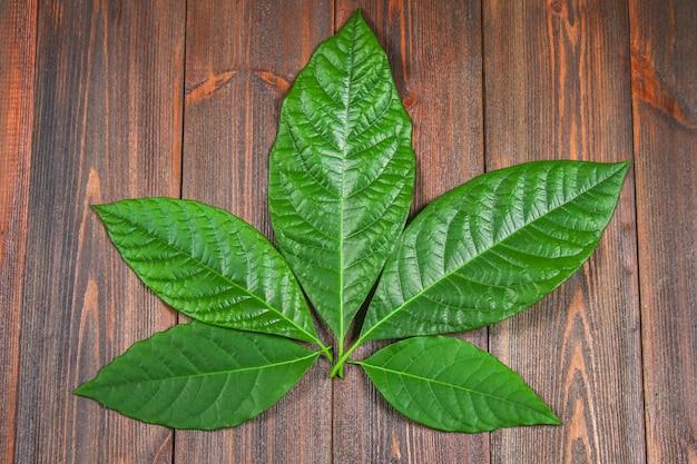 Die grünen blätter der avocado liegen auf einem braunen holztisch in form von cannabis. draufsicht Premium Fotos