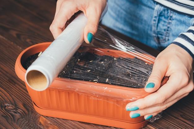 Die hände von frauen mit heller maniküre sind mit plastikwickelsamen und erde in einem topf für den anbau von pflanzen bedeckt Premium Fotos