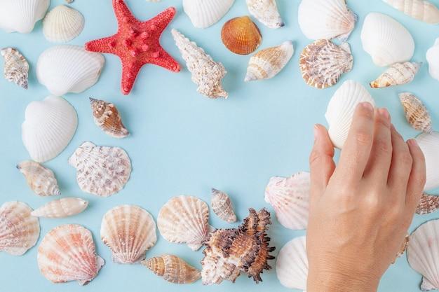Die hand der frauen halten eine muschel auf einem blauen sommerhintergrund mit verschiedenen oberteilen und starfish Premium Fotos