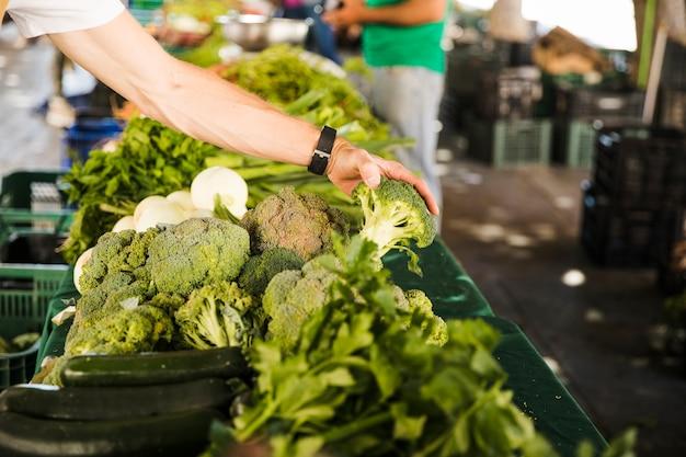 Die hand des mannes, die brokkoli beim wählen des gemüses vom markt hält Kostenlose Fotos
