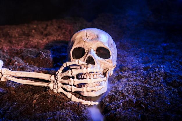 Die Hand des Skeletts, die den Zahn des Schädels auf dem Boden ...