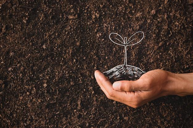 Die hand eines mannes pflanzt in seiner vorstellung einen baum, eine vorstellung von der umwelt. Premium Fotos