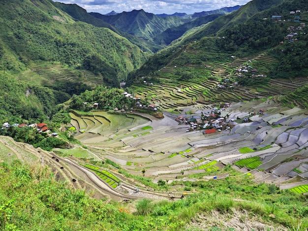 Die reisterrassen in banaue, philippinen Premium Fotos