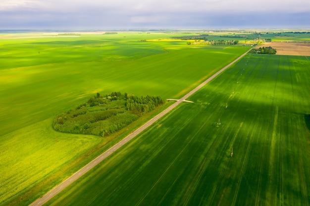 Die route verläuft zwischen den grünen wiesen von belarus. ansicht von oben Premium Fotos