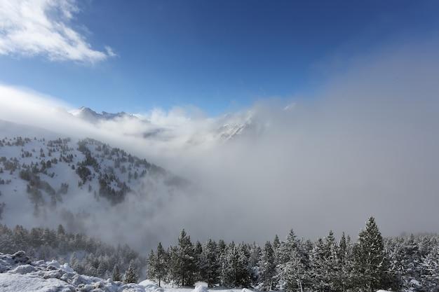 Die spitze der berge mit wald bedeckt mit schnee, nebel und wolken an einem sonnigen frostigen tag Premium Fotos