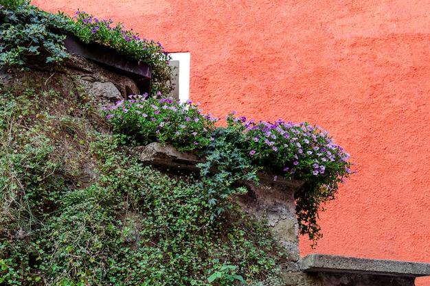 Die steinmauer ist mit lebenden pflanzen vor dem hintergrund eines roten hauses dekoriert. Premium Fotos