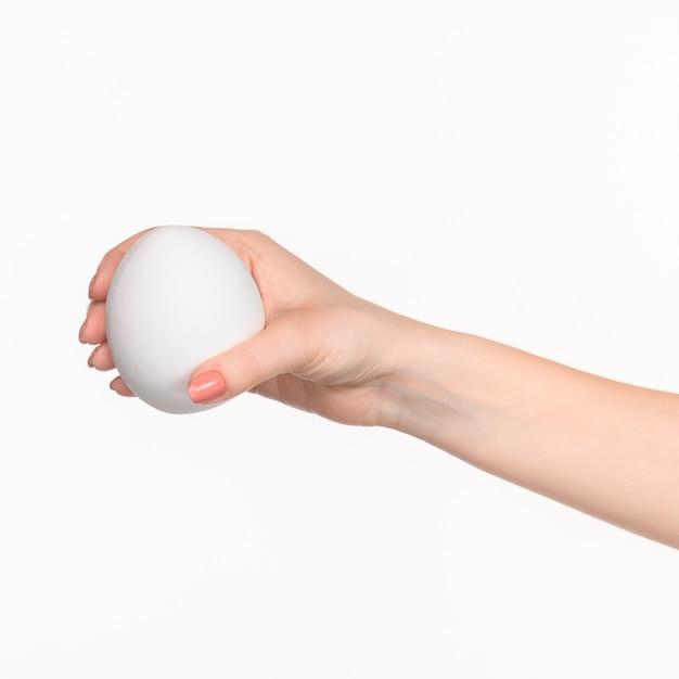 Die weibliche hand, die weißes leeres styroporoval gegen den weißen hintergrund mit rechtem schatten hält Kostenlose Fotos