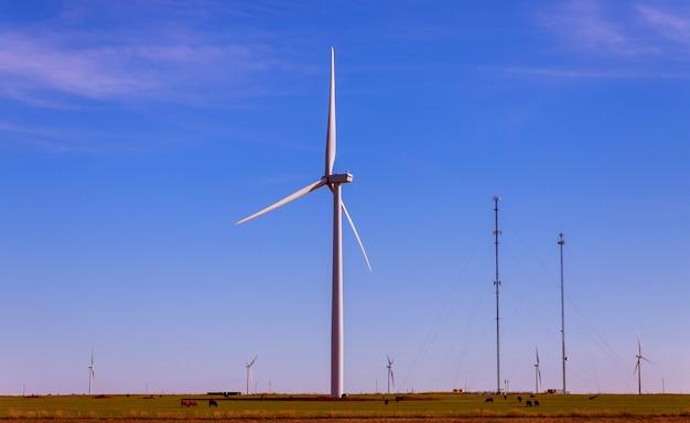 Die windkraftanlagen im windpark von texas reinigen erneuerbare energie Premium Fotos
