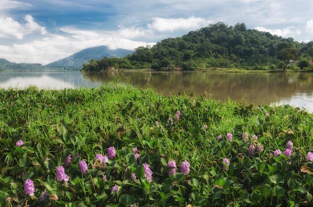 Dies ist daklak, ein land der elefanten und wasserfälle, eine provinz im zentrum des gebirgigen vietnam. Premium Fotos
