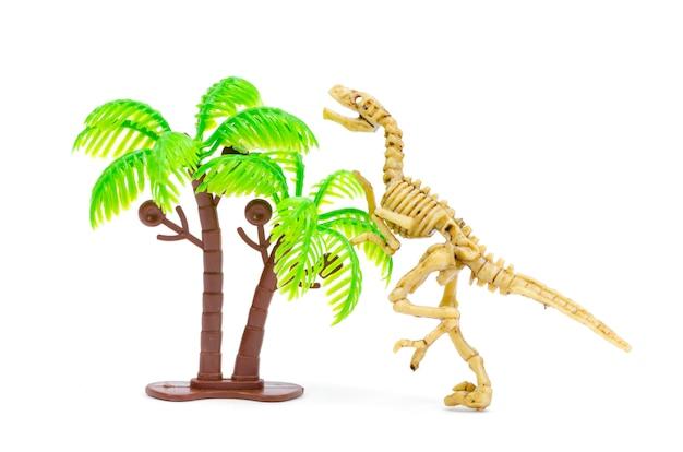 Dinosaurierskelett zur wissenschaftsausbildung Premium Fotos