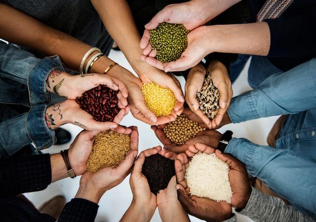 Diverse menschen hände halten show superfood grains corps Premium Fotos