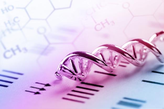Dna, molekül, chemie im laborversuch Premium Fotos