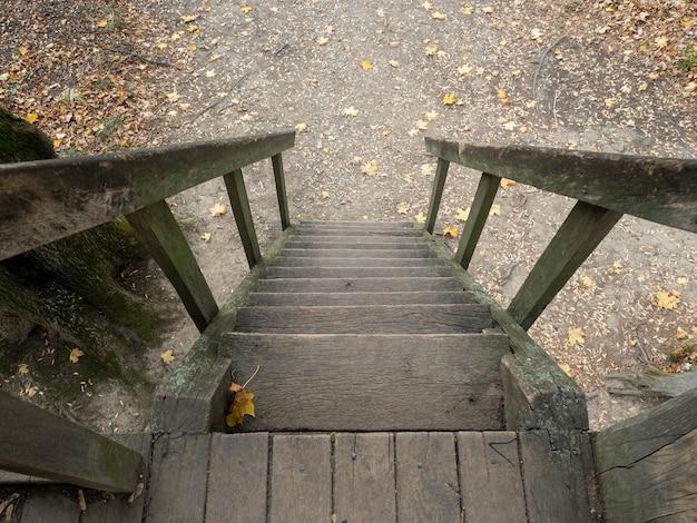 Draufsicht auf eine holztreppe in einem herbstpark Premium Fotos