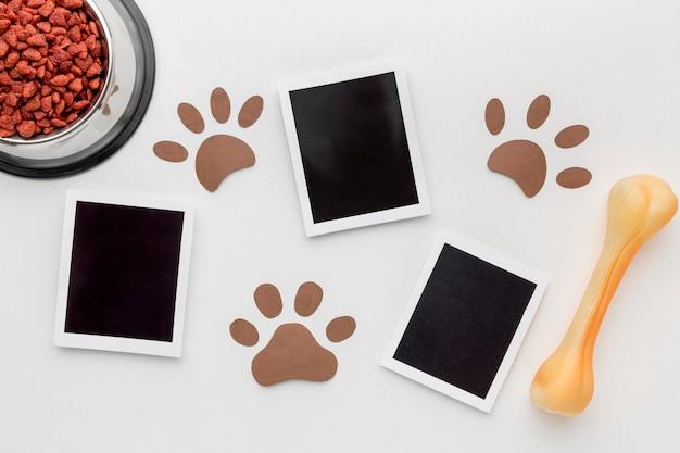 Draufsicht auf fotos mit pfotenabdrücken und knochen für tiertag Kostenlose Fotos