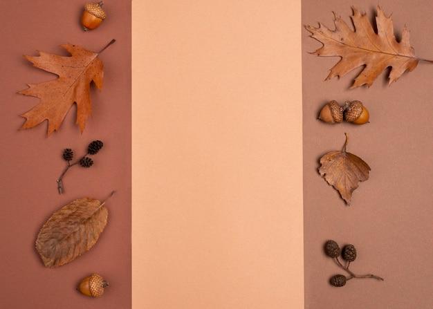 Draufsicht auf monochromatische blattvielfalt mit kopierraum Kostenlose Fotos