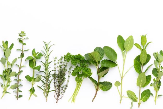Draufsicht auf verschiedene gewürzpflanzen Premium Fotos