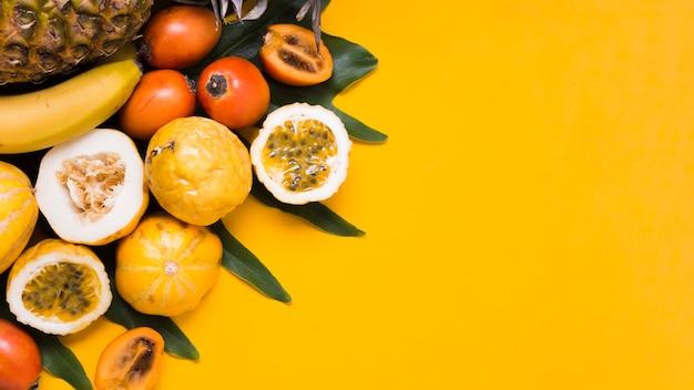 Draufsicht auswahl an exotischen früchten auf dem tisch Kostenlose Fotos